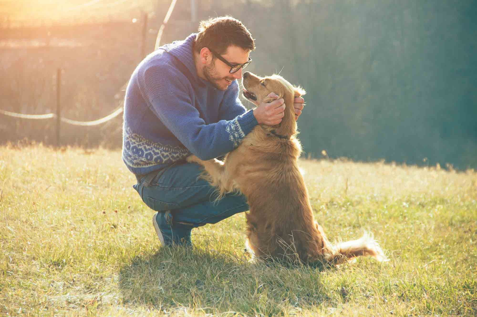Well and Happy: Putting Pet Wellness to Work for You